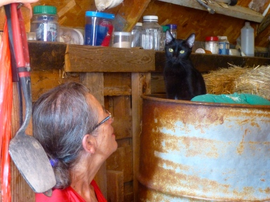 Sr. Aurelia and Holly, the monastery cat